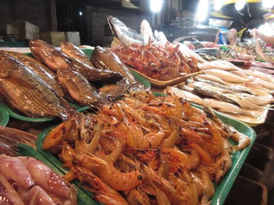 フィリピンの魚介類