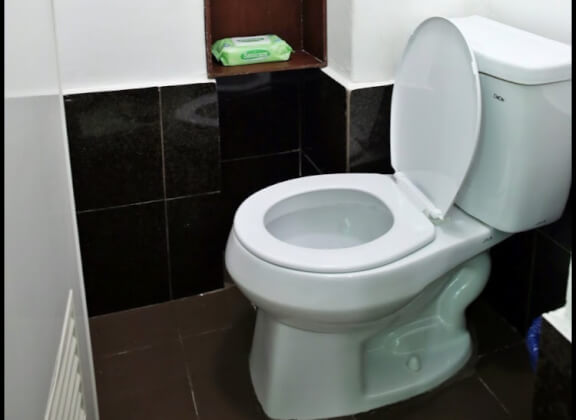 toilet-riku