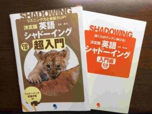 Shadowing training