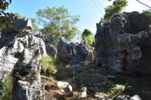 カルゴン山