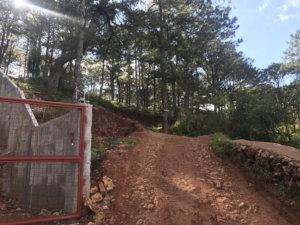 マウントカルゴン山頂までの道