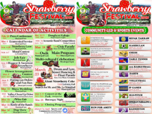 strawberryfestivalschedule