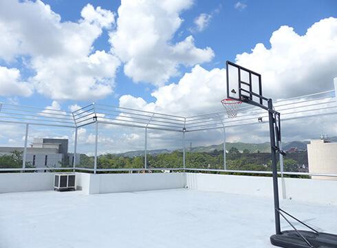 新ビルバスケット